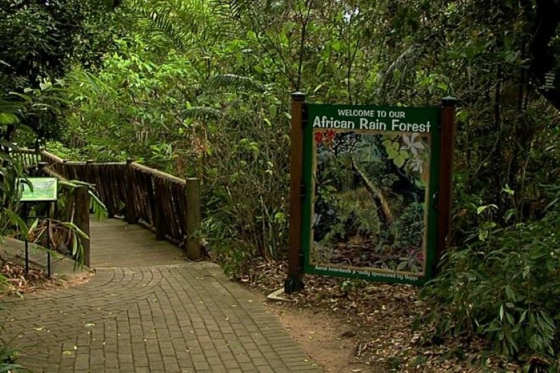 SA Tour for Blind & Visually Impaired Lowveld Botanical Gardens Ntwanano Tours